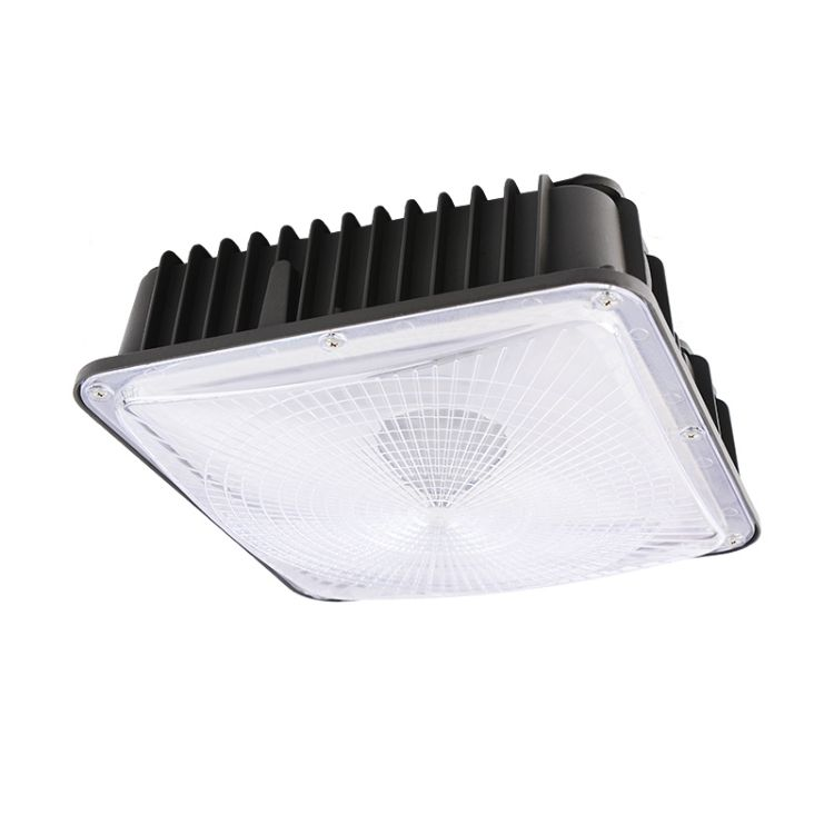 Picture of Surface Mount Canopy Light 60W